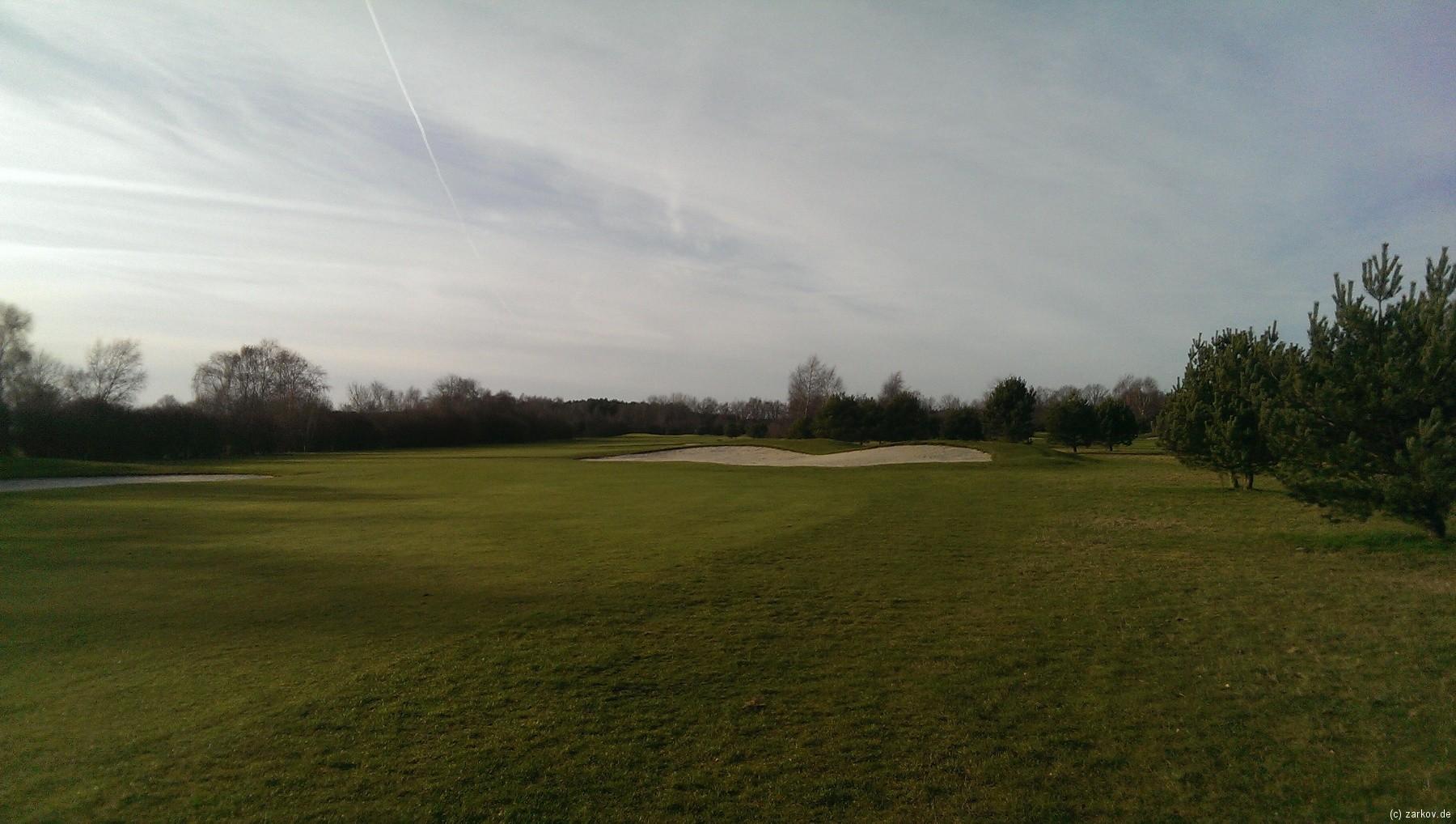 20140104 Golf Green Eagle